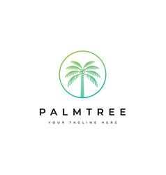 coconut tree logo designpalm tree icon vector image
