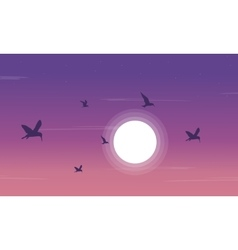 Silhouette of birdsea and moon scnery vector