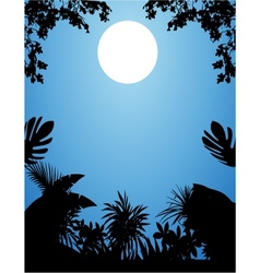 jungle at night vector image vector image