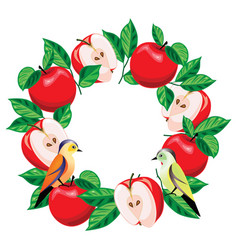 apples are arranged in a circle vector image