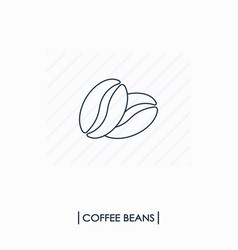 coffee beans outline icon vector image