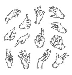hand gesture sketch isolated vector image