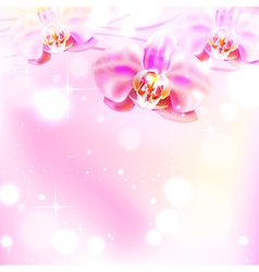 Magical Background with Orchids vector image