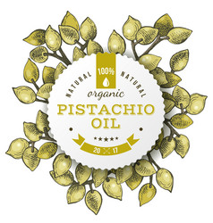 Phistachio oil label over hand drawn nuts vector