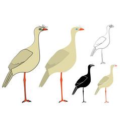 Siriema bird in profile view vector