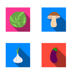 Cabbage white mushroom forest garlic useful vector