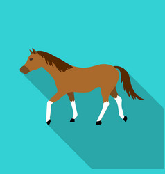 horse icon in flat style isolated on white vector image