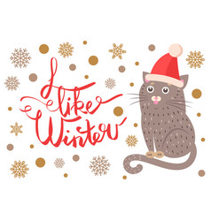 i like winter poster with cat vector image