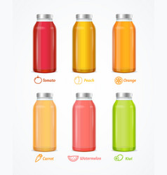 realistic detailed 3d different juice bottle set vector image