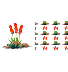 seamless background design with aloe vera flowers vector image
