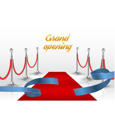 white backgraund with red carpet and blue ribbon vector image