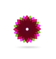 abstract purple flower icon vector image