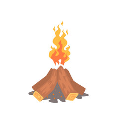 bonfire camping fire cartoon vector image