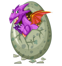 Dragon comes out of egg vector