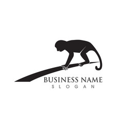 Monkey symbol logo and symbol vector