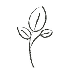monochrome blurred silhouette of branch and leaves vector image