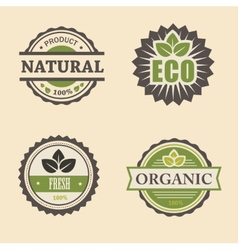 Natural eco design elements set vector