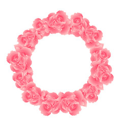 pink carnation flower wreath vector image