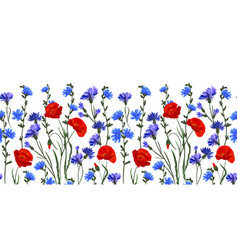 seamless rim border with herbs and wild flowers vector image