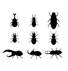 set of stag beetle in silhouette style vector image