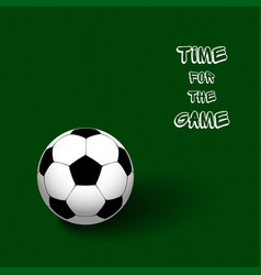 soccer ball on a green background in the form of vector image