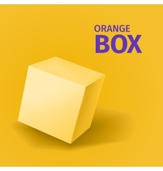 Abstract orange box with shadow vector image vector image