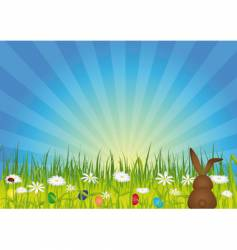 Easter bunny on green meadow vector image vector image