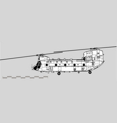 boeing ch-47 military transport helicopter vector image
