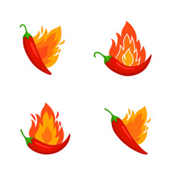 Burned chilli peppers vector
