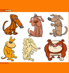 dogs cartoon characters set vector image