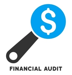 Financial Audit Icon With Caption vector