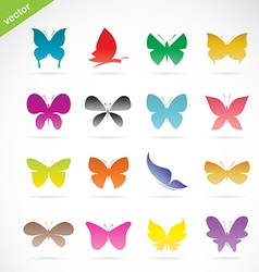 group of colorful butterfly vector image