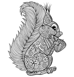 Hand drawn funny squirrel with nut for adult anti vector