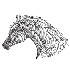 hand drawn head horse in graphic ornate style vector image