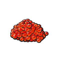 Sketch cartoon red salmon caviar vector