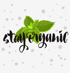 stay organic rough traced custom artisti vector image