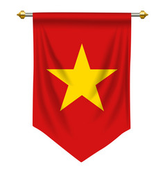 Vietnam pennant vector