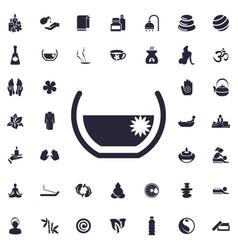 Aroma bath icon vector