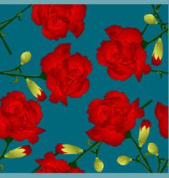dianthus caryophyllus - red carnation flower on vector image