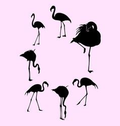 Flamingo birds animal gesture silhouette vector