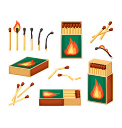 matches collection safety burn from wooden vector image