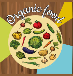 Organic fruits and vegetables food hand drawing vector