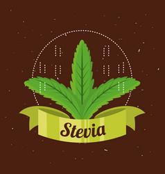 Stevia natural sweetener plant and organic product vector