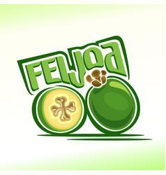 logo for feijoa vector image vector image
