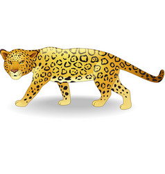 cute cheetah cartoon vector image