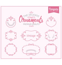 Delicate Ornamental Frame Set vector