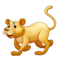 Lion walking alone on whitebackground vector