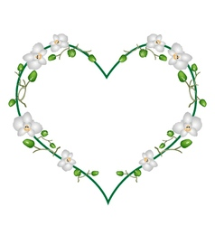 Moon Orchids Flowers in A Heart Shape vector image