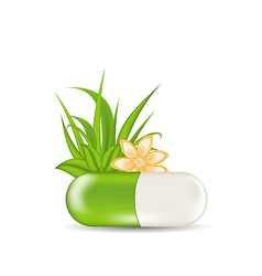 Natural medical pill with flower leaves grass vector image