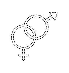 sex symbol sign black dashed icon on vector image